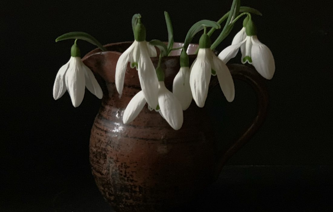 Ten Beautiful Snowdrop Quotes for the Early Spring