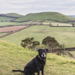 Cadbury Castle Hill Fort: An Ancient Site with Ties to King Arthur