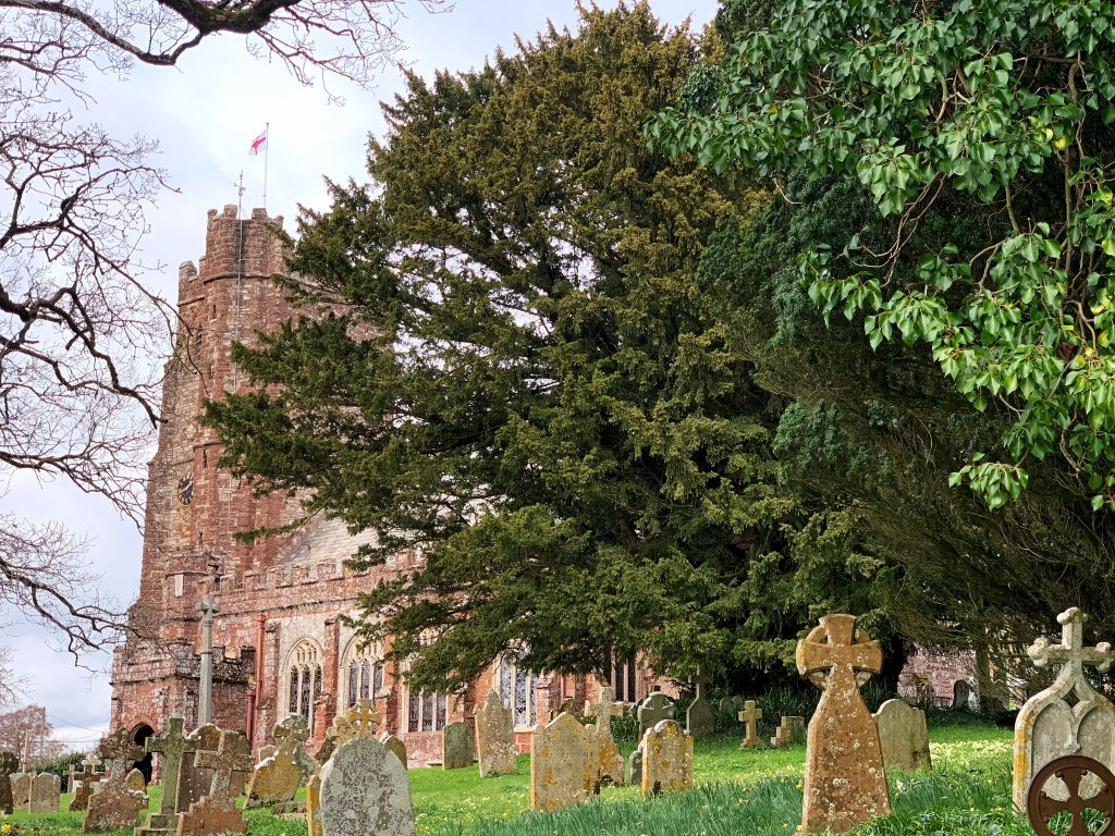View of St Andrew's and one of the oldest yew trees in Britain at Kenn, near Exeter in Devon