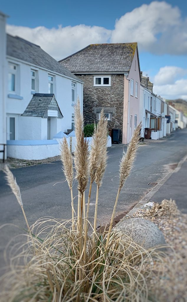 View of Cottages in the small fishing village of Beesands, the South Hams, Devon