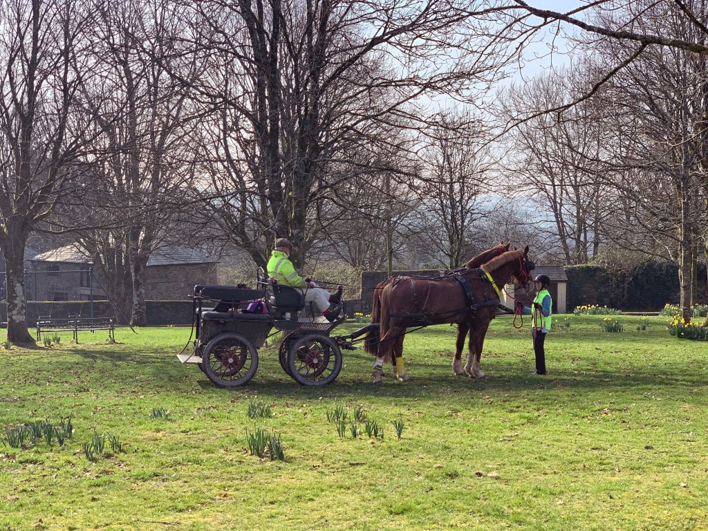 Horse Drawn Carriage on the Village Green at Blisland, Bodmin Moor, Cornwall