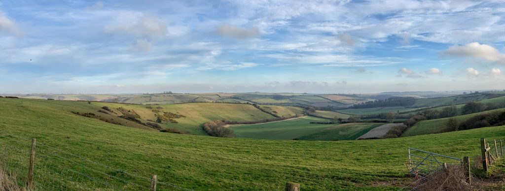 View of Hardy Country between Evershot and Cerne Abbas