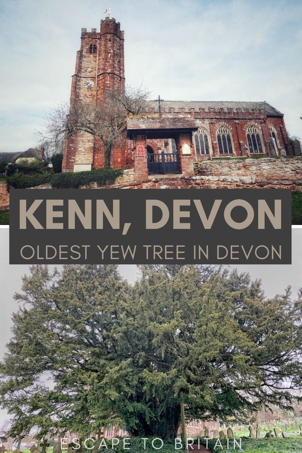 This Churchyard in Devon is home to one of the oldest Yew Trees in Britain/ Kenn, Exeter, Devon, England