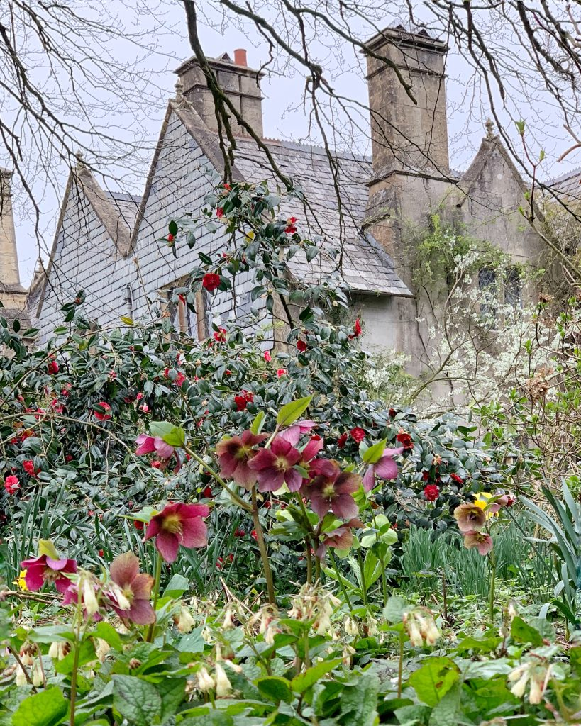 View of the Tearoom (the Old Vicarage) at Hill House Nursery, Landscove, Devon
