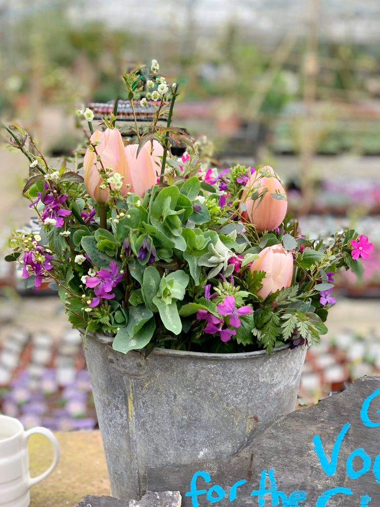 Fresh Cut Spring Flowers for sale at Hill House Nursery, Landscove, Devon