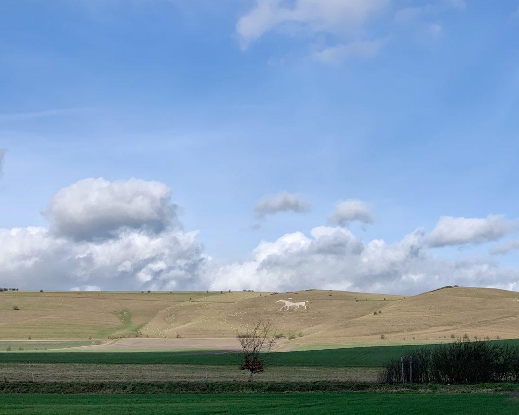 Alton Barnes White Horse, Milk Hill, Pewsey Vale, Wiltshire