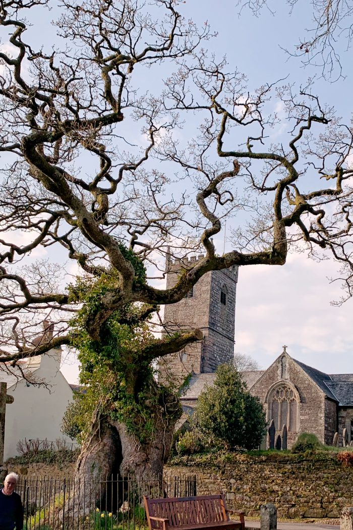 10+ Beautiful Dartmoor Towns & Villages You Must Visit