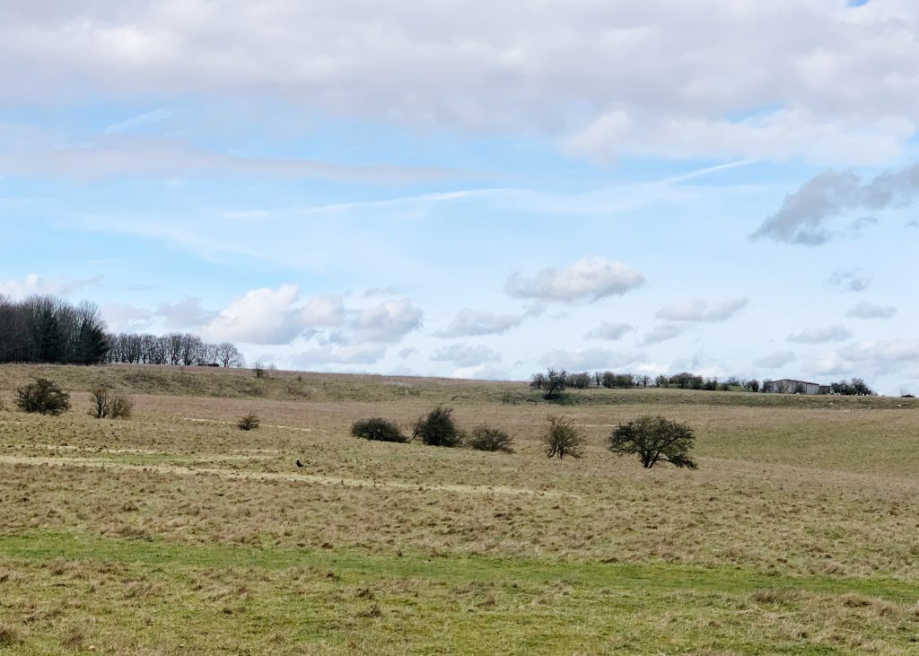 View of the Durrington Wall near Woodhenge, Amesbury, Wiltshire