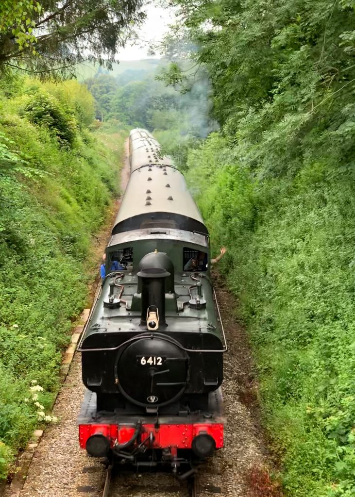 Steam Train on the South Devon Railway