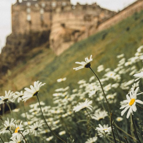 10+ Insider Edinburgh Travel Tips You Need to Know Before Visiting for the first time. Looking for where to go, what to see, and where to stay in Edinburgh? Here's a complete guide by a local!