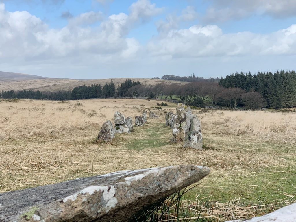 Stone Row on Chagford Common